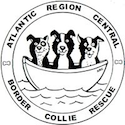Atlantic Region Central Border Collie Rescue logo