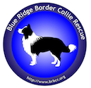 Blue Ridge Border Collie Rescue Logo