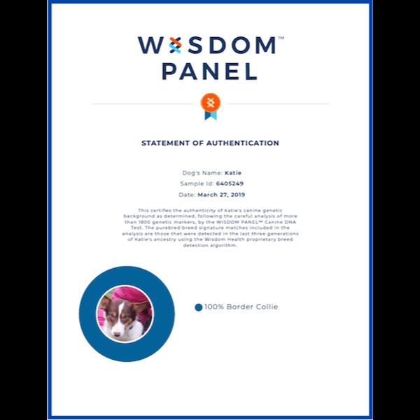 Katie Wisdom Panel Certificate
