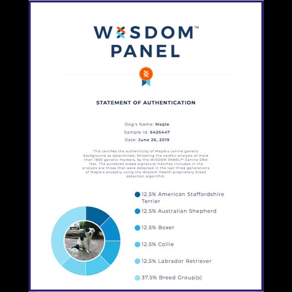Maple Wisdom Panel Certificate